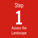 Step 1: Assess the Landscape